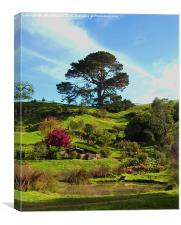 Hobbiton, The Shire, Canvas Print