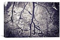 Spooky Trees, Canvas Print