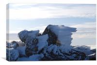 windswept ice