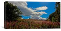 Skies over Stirlinghire, Canvas Print