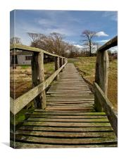 Aberlady Bay Rickety Bridge, Canvas Print