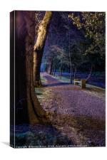 Callendar Park Falkirk, Canvas Print