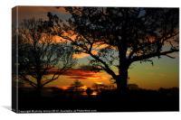 Silhouette Sunrise, Canvas Print