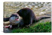 Otters Dinner Time, Canvas Print