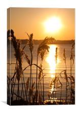Poole Harbour Sunset, Canvas Print