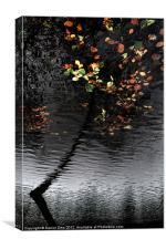 Trakoscan Tree Reflection, Canvas Print