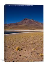 Laguna Miscanti Atacama, Canvas Print