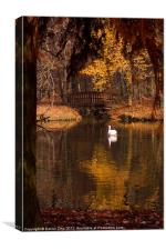 Swan at Maksimir Lake, Canvas Print