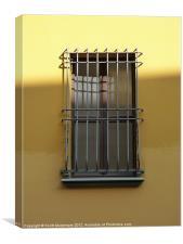 Italian Window, Canvas Print