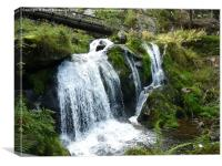 Triberg Waterfalls, Canvas Print