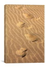 foot steps in the sand, Canvas Print