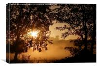 Sunrise Beyond, Canvas Print