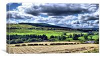 Northumberland Skies, Canvas Print