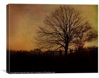 Textured Tree with Sunset, Canvas Print