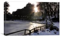 Icy Peasholm Park, Canvas Print