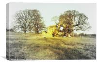 Ayton Castle #2, Canvas Print