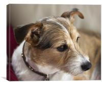 Portrait of a Terrier, Canvas Print
