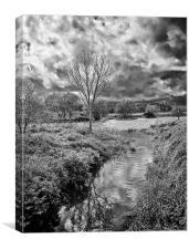 Throop River, Canvas Print
