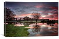 Janesmoor Pond at Sunrise, Canvas Print