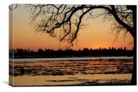 Cradling the Lake, Canvas Print