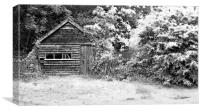Shed at Buscot Weir, Canvas Print