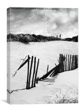 Dunes at Camber Sands., Canvas Print