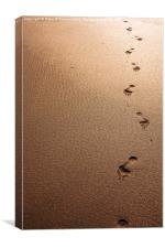 Footprints in the sand, Canvas Print