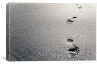 Platinum Footprints in Sand, Canvas Print