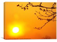 Orange sky at sunset, Canvas Print