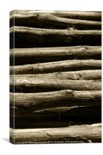Timber posts, Canvas Print