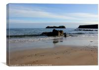 HEBRIDES BEAUTIFUL BAYBLE BEACH OF LEWIS 16, Canvas Print