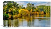 A Colourful autumn afternoon, Canvas Print