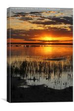 Sunset at Lake Burrumbeet, Canvas Print