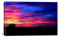 Sunset Over Radnor Park, Canvas Print