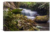 Brockhill School Park Waterfall, Canvas Print