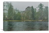 Sleet, Canvas Print