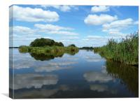 Clouds reflecting in the waters of the reed beds, Canvas Print