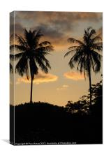 Night Falls in Paradise, Canvas Print