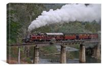 NA Returns to Walhalla Goldfield Railway, Canvas Print