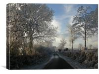 Winter Haw Frost, Canvas Print