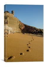 Sand Prints, Canvas Print