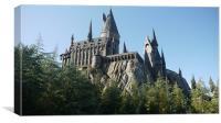 Harry Potter, Canvas Print