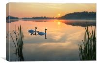 Dawn tranquility on the Norfolk Broads, Canvas Print