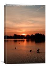 Bushy Park Sunset, Canvas Print