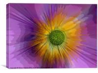 Anemone explosion art, Canvas Print