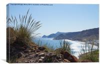 Coast with esparto grass, Canvas Print