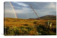 Rain and Rainbow, Canvas Print