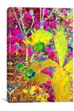 Cactus & Bougainvillea, Canvas Print