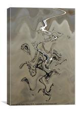 Agave on the beach - 2, Canvas Print