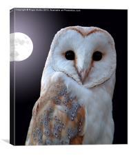 Barn Owl by Full Moon, Canvas Print